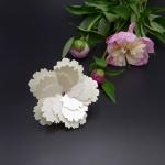 화이트 플라워 카드White Flower Card