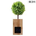 코비CB BL60 대나무 무소음 LED 알람 시계