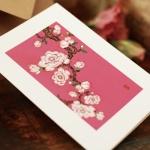 카드/축하카드/감사카드/연하장 분홍꽃 피어 FT214-1
