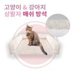 강아지고양이 물세탁 상팔자 매쉬 사계절 쿨 방석쿠션