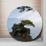 ia415-원형아크릴액자_풍수부와명예의소나무