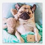음악감상 강아지 DIY 보석십자수 십자수 비즈세트