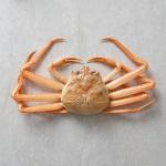 구룡포 연지홍게 3kg(10-12마리)