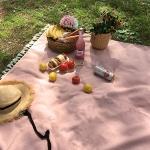 피크닉매트 - Basic Linen Pink