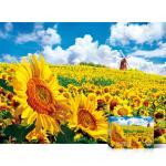 1000피스 퍼즐 황금빛 해바라기 들판 TPD10-1020