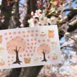 벚꽃 스티커
