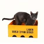 노리노리 고양이 카펫 국내제조 스크래쳐박스