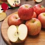 [아삭아삭] 경북안동 고냉지 꿀 사과 5kg/23~25과