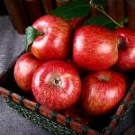 정품 가을 햇 빨간 사과 실중량 4kg/옵션별