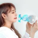 마풍기 [마스크 쿨링가드 / 1박스 2개입]