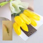 일루미네이팅 옐로 튤립 (생화) + 메시지카드