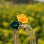 유채꽃 책갈피 북마크