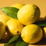 정품 썬키스트 팬시 레몬 2kg 4kg 17kg 중 대 미국산
