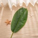 바나나잎 조화