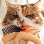 고양이 강아지 사랑조개빗 3종 그루밍 털제거 브러쉬