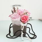 카네이션 포트 바구니 가정의달선물
