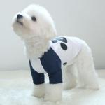 강아지옷 래글런 티셔츠