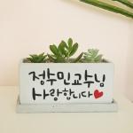 [교수님/선생님 감사합니다]캘리그라피화분