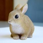 마그넷 PET BANK 토끼