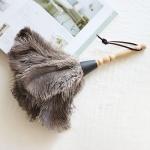 [콩지] 타조털 먼지털이