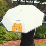 카카오프렌즈 3단 우산