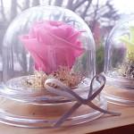 [시들지않는생화]rose in dome