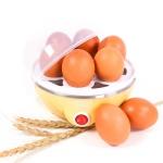 갓샵 계란 달걀 찜기 삶는기계 에그쿠커 에그스티머