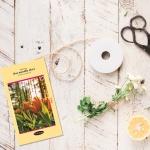 (한달)one month photo diary - 컬러 유럽