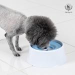 [딩동펫] 강아지 플로팅 급수기