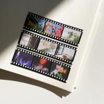 밍키트 데일리 와이드 필름 스티커