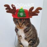 루돌프 모자 강아지 고양이 크리스마스 코스튬