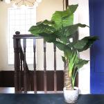 인테리어 데코 거실 인조 나무 조화 화분 (타로트리)