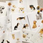 세상의 모든 강아지 수채화 클래스(+스타터키트) WCK0003000S1