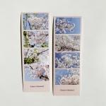 밍키트 벚꽃 네컷 스티커