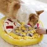 제이코 강아지 반려동물 노즈워크 피자모형