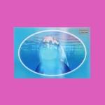 LENTICULAR CARD_DOLPHIN