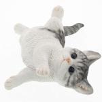 누워있는 고양이BLACK/WHITE
