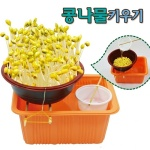 콩나물키우기(가습기) 1인용 콩나물기르기 콩나물재배