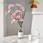 화이트라벨 디퓨저 200ml + 벚꽃/대