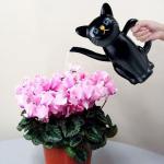 메이호 고양이 물뿌리개/물조리개 (블랙)