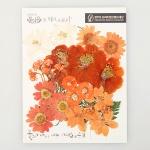 [압화 꽃모음 - A타입] 오렌지향기 꽃모음