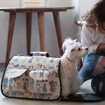 2015 New 애견 패션 이동장 - 야옹이 이동가방/강아지 가방/애견 가방