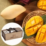 [스위트망고] 과일의왕 망고 선물세트 5kg/16개(특)