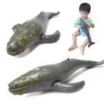 소프트 해양 (중) 혹등고래 모형 피규어 교육용 완구