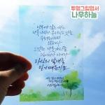투명그림엽서-나무하늘(10장)