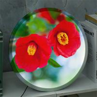 na919-LED액자35R_눈물처럼후드득떨어지는꽃동백