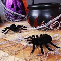 거미모형 10cm(2개입)