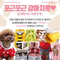 [고운매] 포근포근 강아지옷 XXL size 모음전
