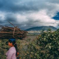 과테말라 안티구아 엔트레 볼카네스 워시드(Guatemala Entre Volcanes Wahsed)