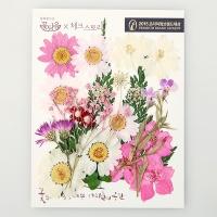 [압화 꽃모음 - A타입] 미니핑크 꽃모음